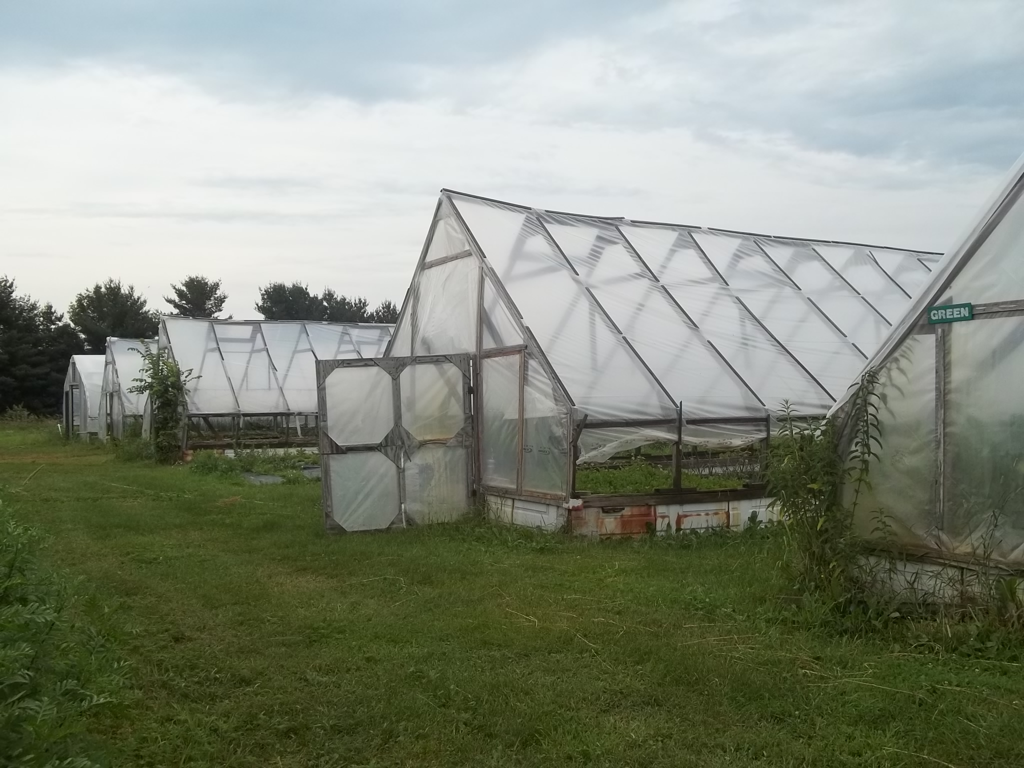 Greenhouses at Sunbow Farm